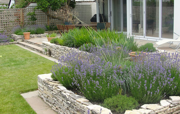 friars cliff garden  design and landscape
